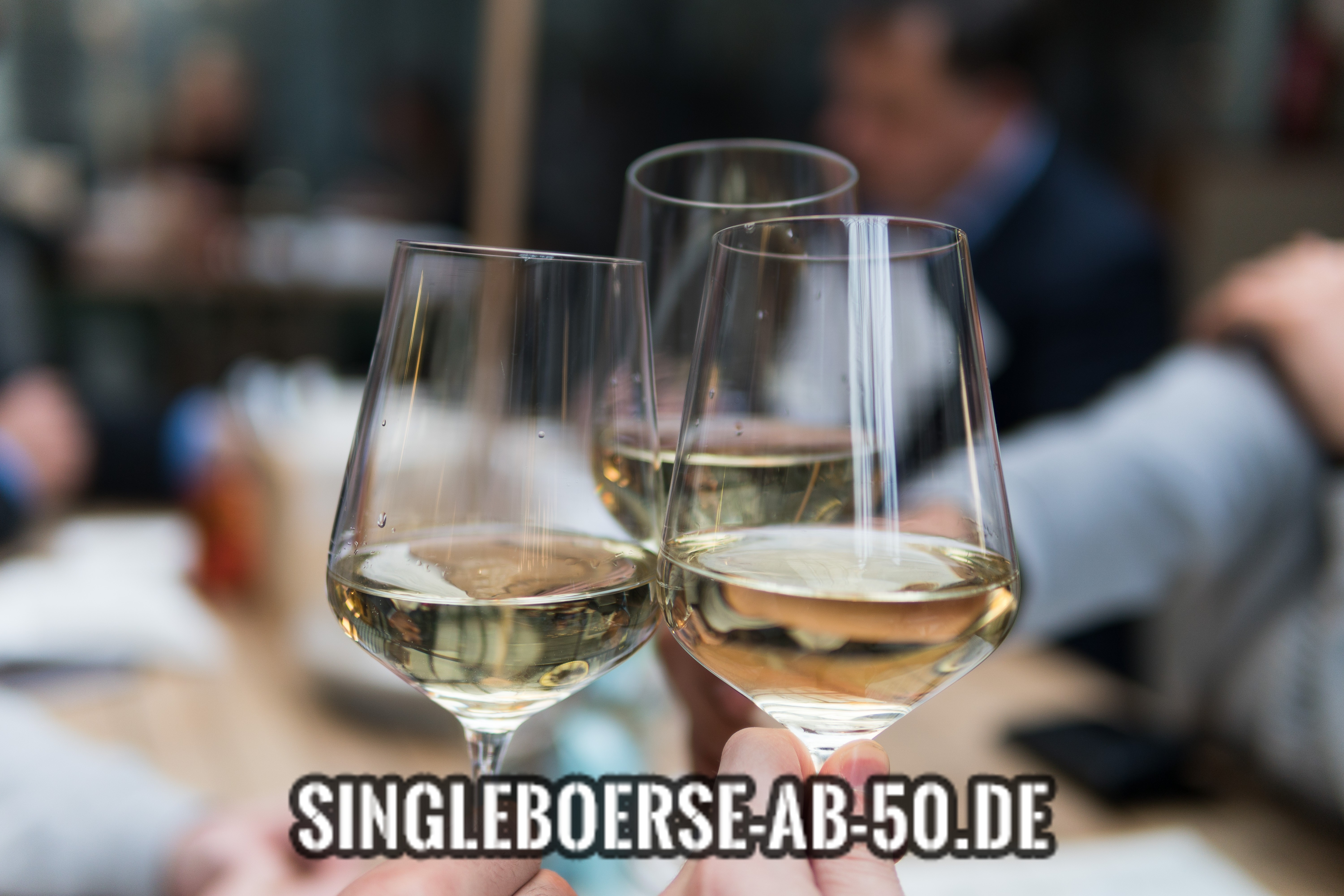 single party 50+